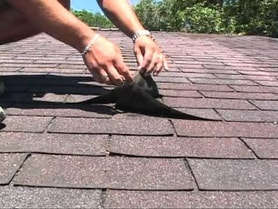 Shingle Roof Inspected and Maintained  PP in Florida
